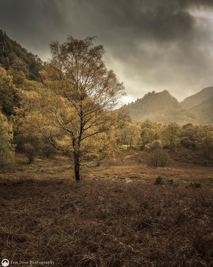 Borrowdale Autumn Mood