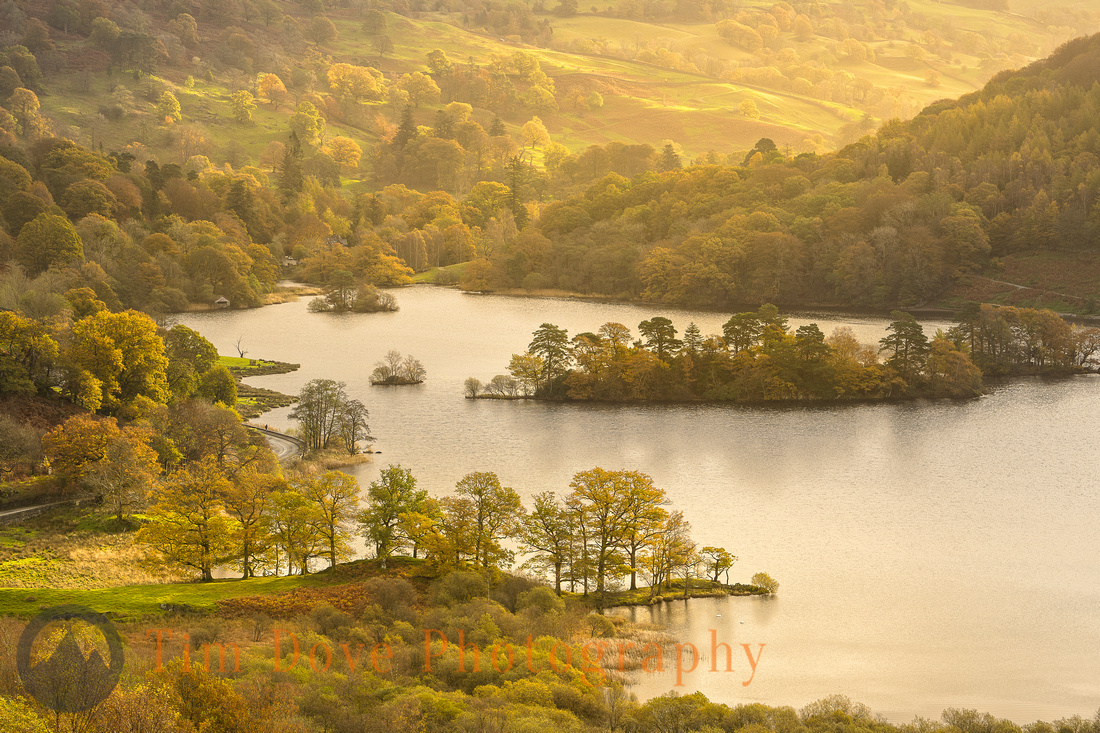 Rydal Water Autumn Gold